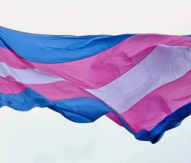 O Provimento 73 do Conselho Nacional de Justiça e o procedimento extrajudicial de alteração do nome e do gênero dos transgêneros diretamente perante o Registrador Civil das Pessoas Naturais